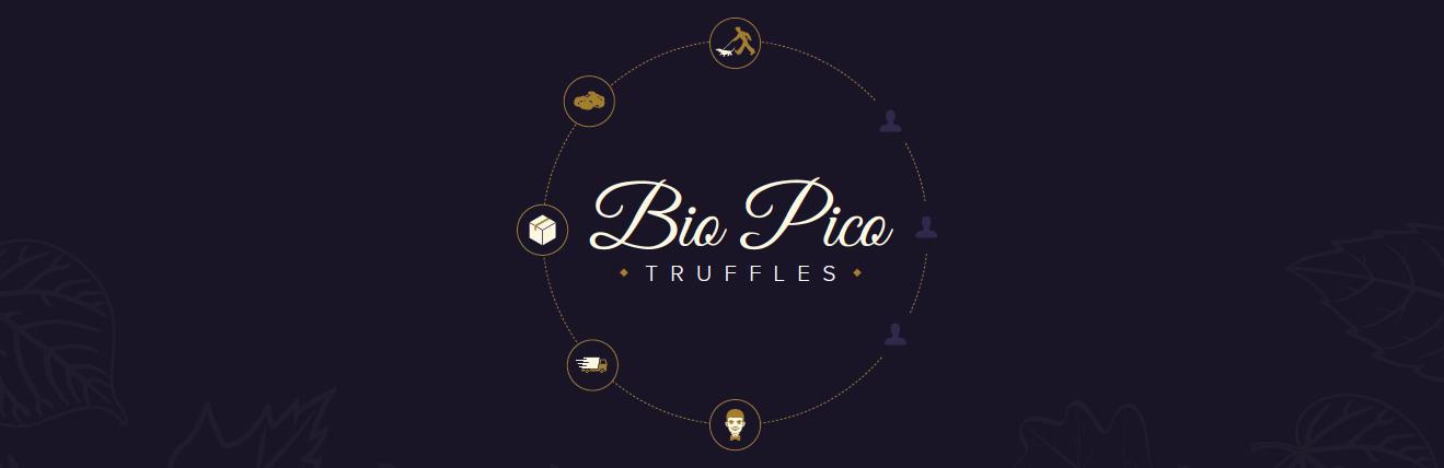 bio-pico-introduction